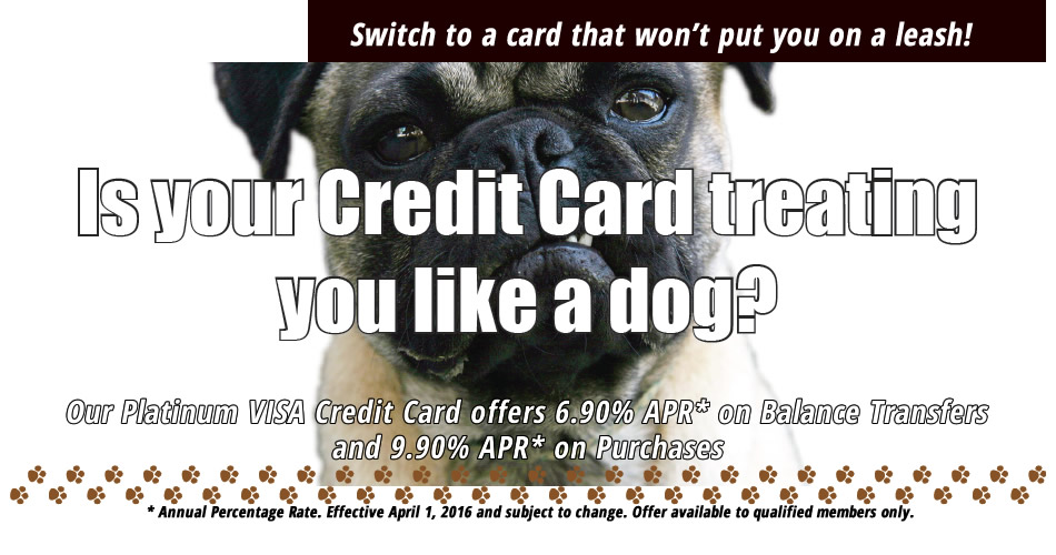 Credit Card Offer